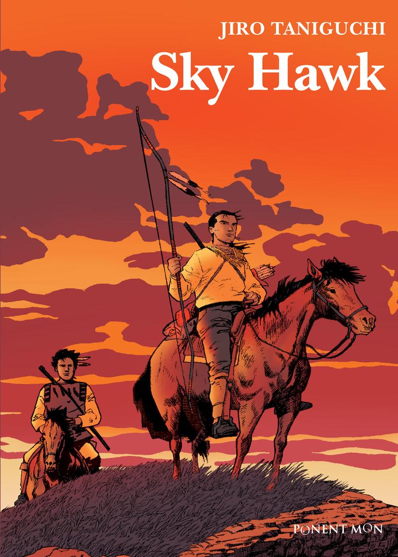 Sky Hawk (NE): portada