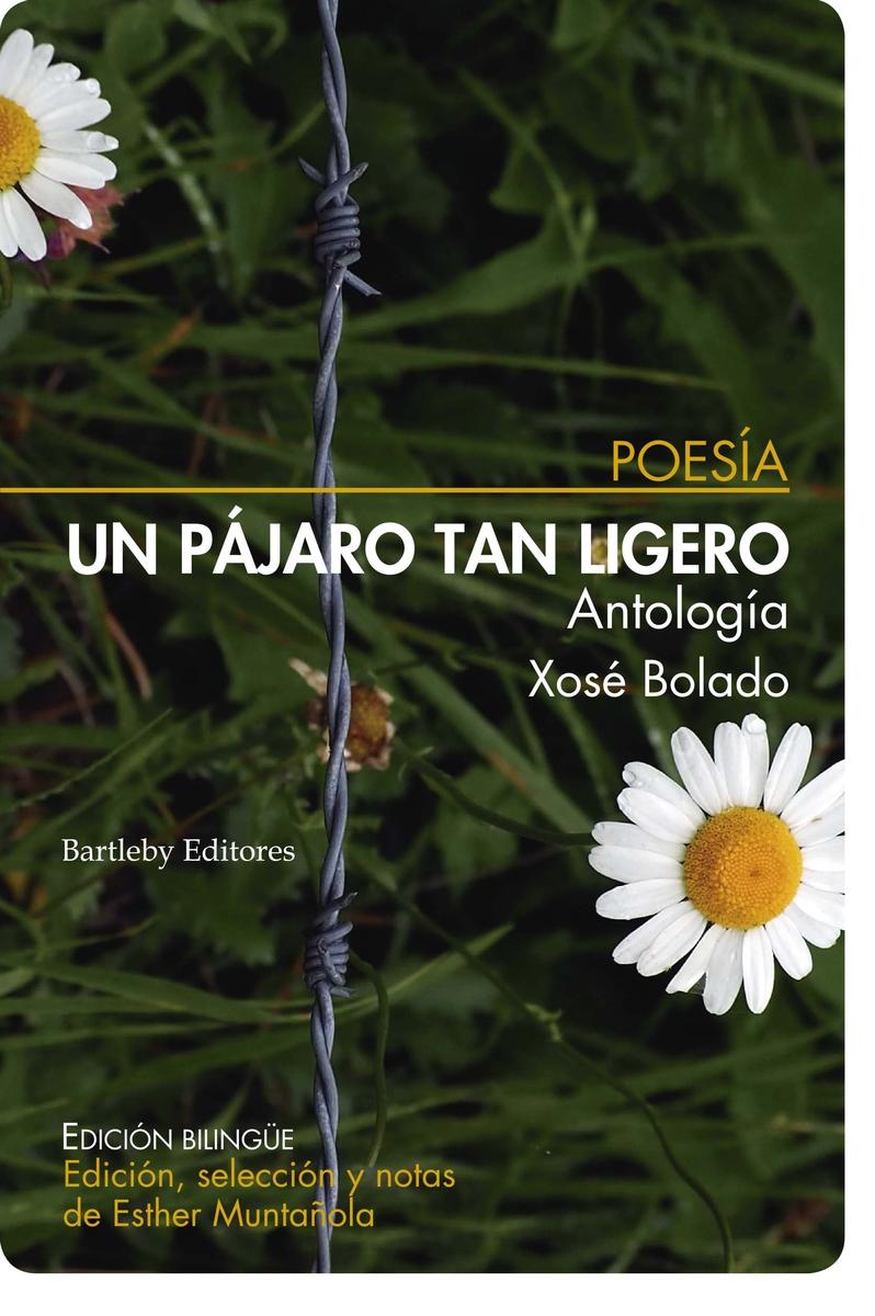 Un pájaro tan ligero (Antología): portada