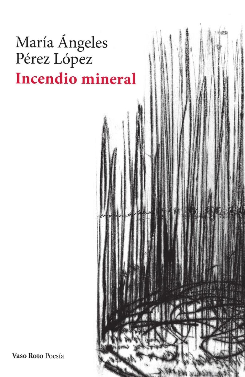 Incendio mineral: portada