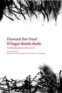 EL LUGAR DONDE DUELE: portada
