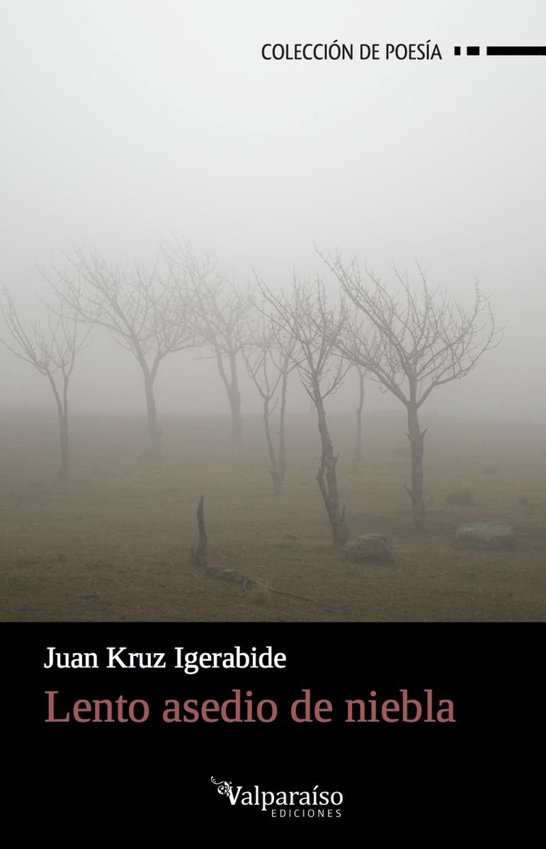 Lento asedio de niebla: portada