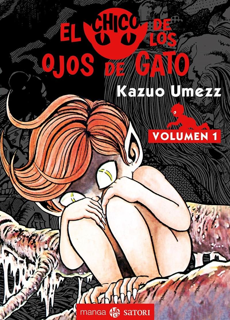 EL CHICO DE LOS OJOS DE GATO 1: portada