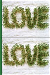 LOVE: portada