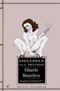 ESPLENDOR EN EL MELONAR: portada