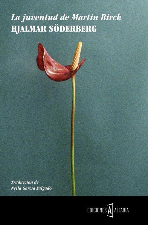 LA JUVENTUD DE MARTIN BIRCK: portada