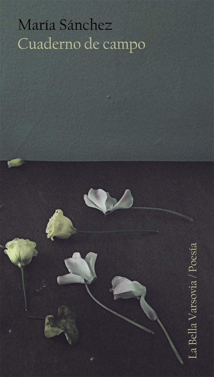 Cuaderno de campo: portada