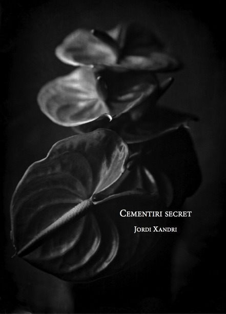 Cementiri secret: portada