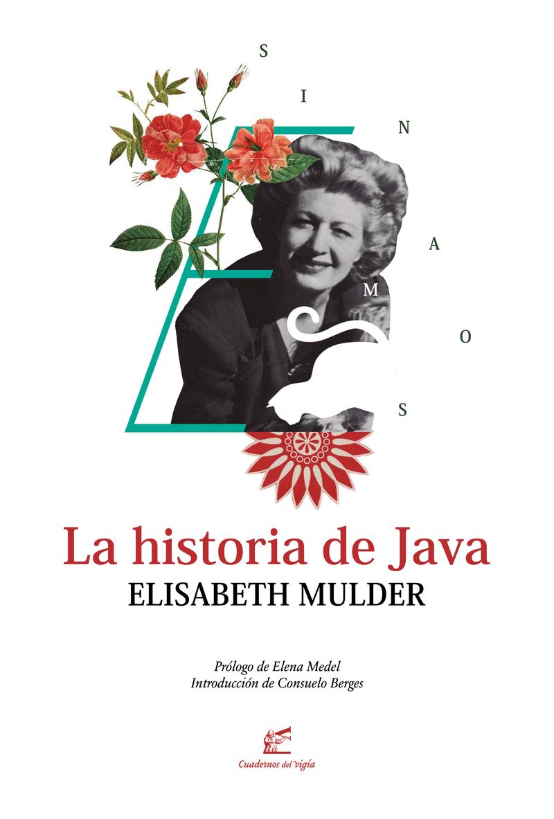 La historia de Java: portada