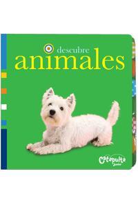 Descubre animales: portada